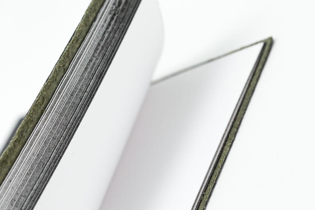 Fotografia de producto fondo blanco Extinto Ductus hojas